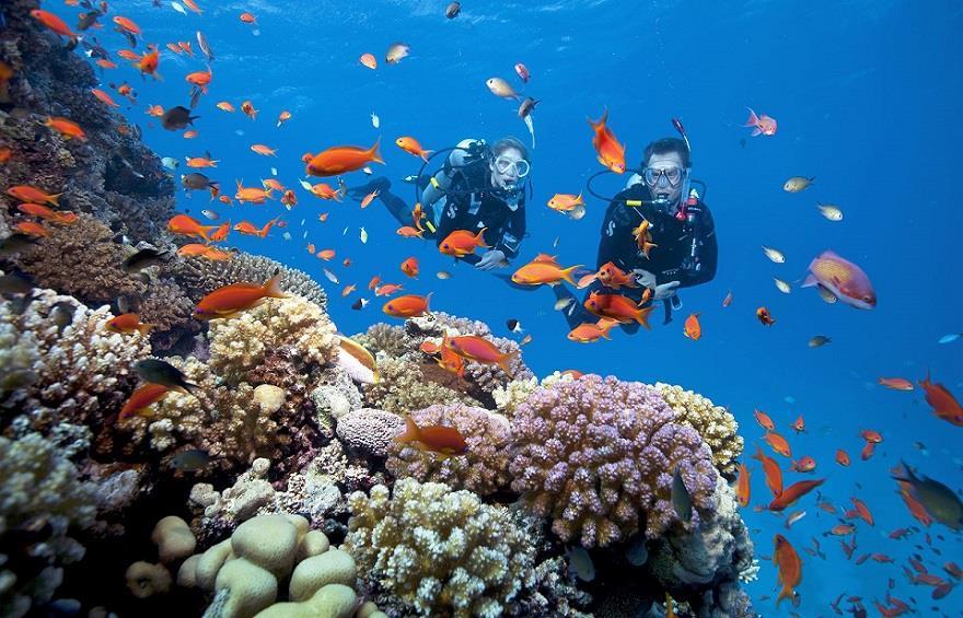 Lặn biển – hoạt động thú vị tại Nha Trang được du khách ưa thích
